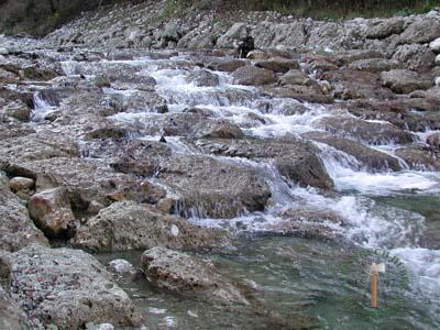 Wasserbausteine - Nagelfluh Wasserbausteine - 00001_02T - Steinbruch Huber